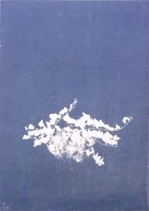 """Welz, Richard: """"Efeu"""", 2013, Cyanogramm auf finnischer Holzpappe, 70 x 50 cm, Peis: 680 EUR"""