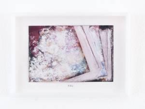 "Ali-Bey, Amel: Serie: ""Fusion"", 2008-14, 13 x 18 cm, pilzmanipulirte Fotografie, Plexiglas, Pappe, nummeriert und signiert, Preis Stk.: 135 EUR"